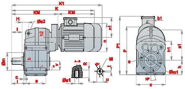 Моторедуктор_DRM_06