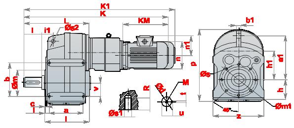 Моторедуктор_DRM_10