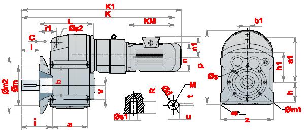 Моторедуктор_DRM_11
